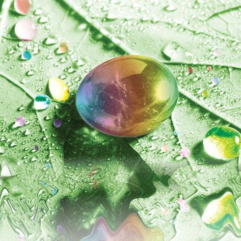 Obojimo zeleno (Go Green) 2012
